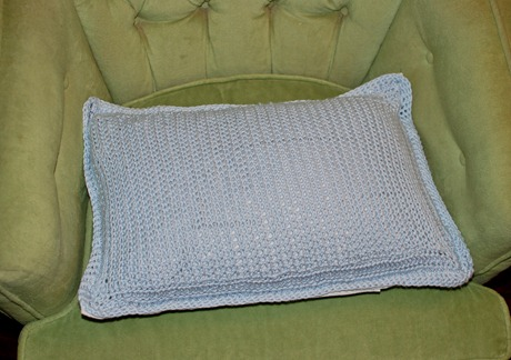 glass, pillow, hydrangeas 014-2