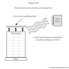 Strawberry Fruit Diagram Hayward Super Ii Pump Motor Wiring Produce Clerk The Clerks Handbook By Rick Chong