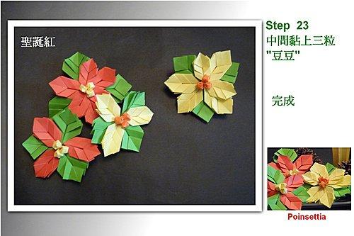 Eagle 摺紙: 摺紙教學 聖誕紅 Poinsettia
