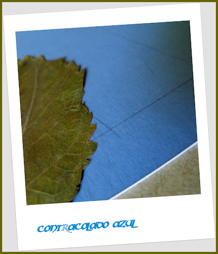 contracolado azul .jpg