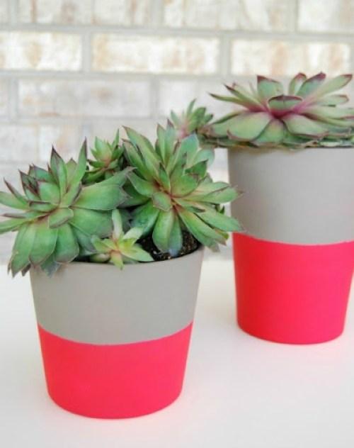 neon flower pot