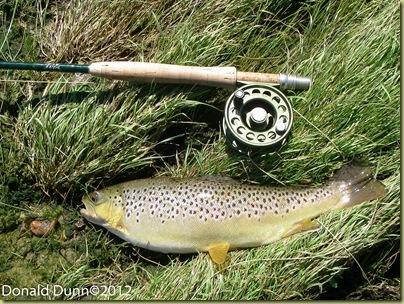 20120424_Norfork River Edited_03_thumb[2]