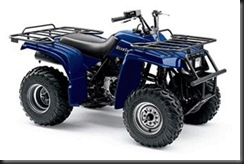 Yamaha-YFM-250-XL-Beartracker-