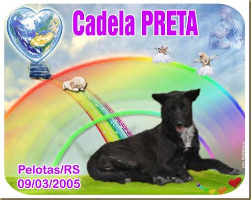 cadela_preta_pelotas