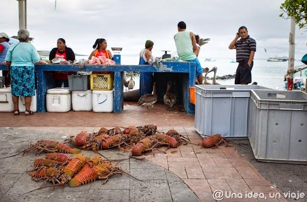 viajar-islas-galapagos-actividades-gratuitas-gratis-baratas-santa-cruz-unaideaunviaje-6.jpg