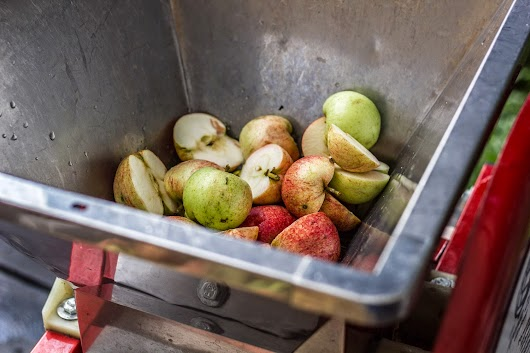 Æbler i kværnen - Brødrene Bækgaard laver æblemost - Mikkel Bækgaards Madblog