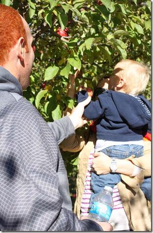 pumpkin patch 2013 095