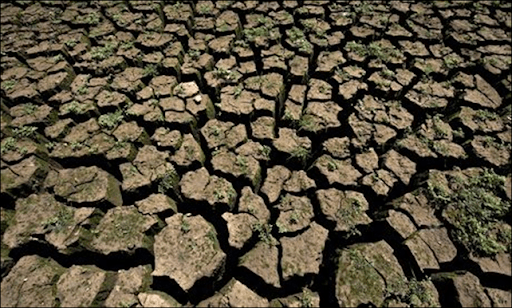 Cracked ground in an area which used to be underwater at the Jaguari dam, 5 September 2014. The dam is part of the Cantareira system, which faces the worst drought in São Paulo's history. Photo: Nelson Almeida / AFP / Getty Images