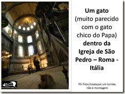 papa_ama_gatos (21)
