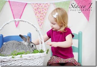bunny 003 copy