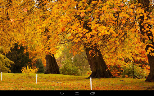 Upstate New York Fall Hd Wallpaper Autumn Wallpaper Android Apps On Google Play
