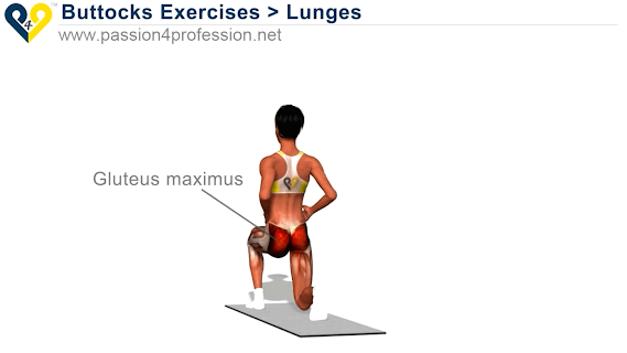 Legs Workout and Exercises screenshot 02