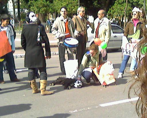 perrito de la manifestación