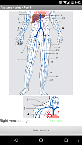 Anatomy - Veins screenshot 4