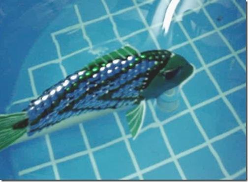 roboticfish-3