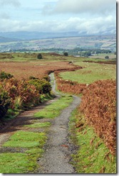 The road to Clee Burf