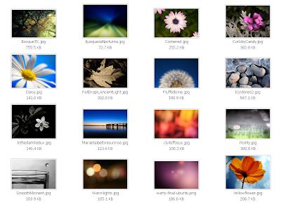 ubuntu 10.04 wallpapers