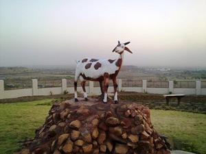गांधीजी की प्रिय बकरी