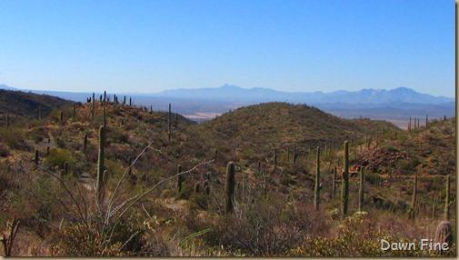 Mt. Wassen hike_058