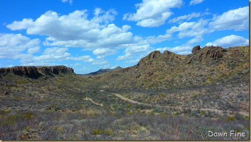 Big Bend Ranch State park_101