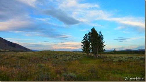 Yellowstone dawns_20090906_084