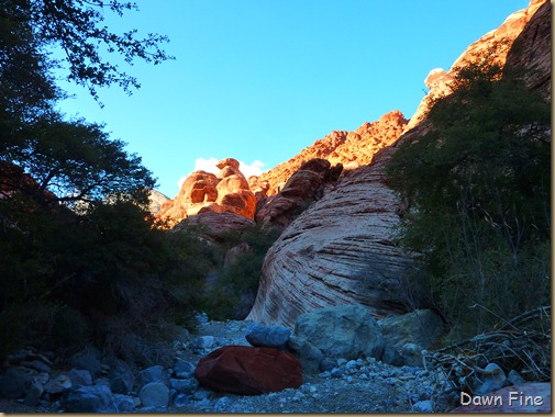 calico hike w David_020