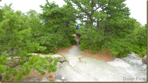Gorham mt hike_084