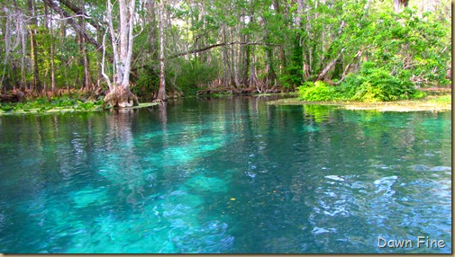 Silver Springs State Park_032