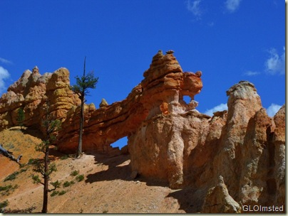 Hoodoos & windows above Mossy Cave trail near Bryce Canyon National Park Utah