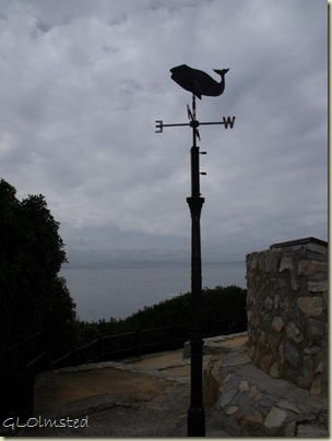 Whale weather vane Whale Museum Hermanus Western Cape South Africa