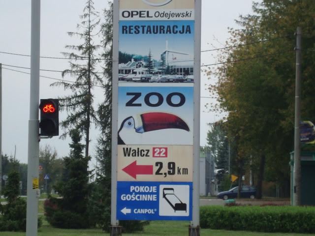 Którędy do zoo?