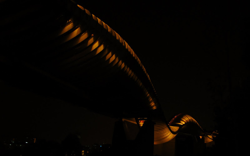 Henderson waves singapore night view