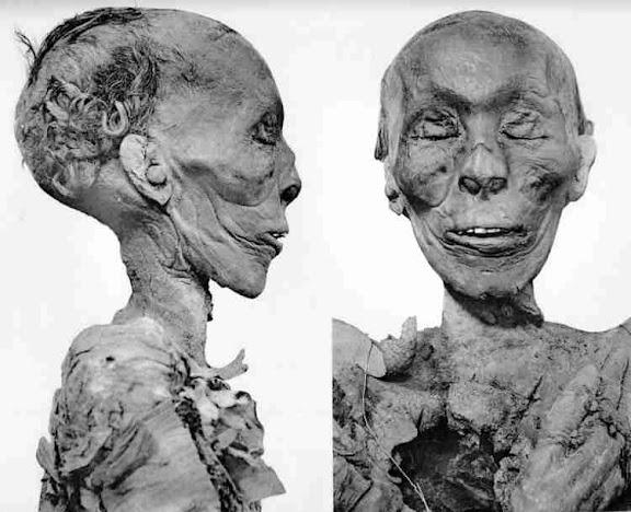 Mummi Thutmose II