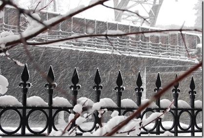 Snow 193