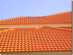 Tampa Non Pressure Tile Roof Cleaning