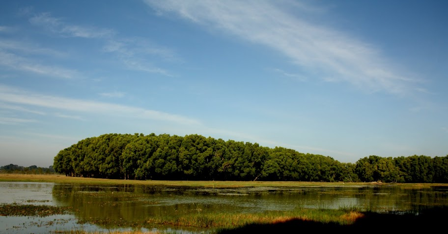 View of Jigani Lake in the morning