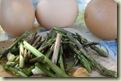 wild asparagus omelette 1_1_1_1
