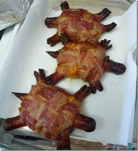 turtle-burger-0