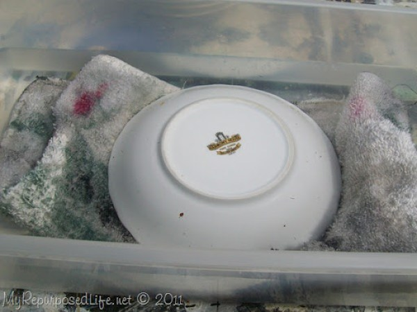 drill china saucer