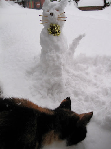 Snow cat meets Ellie