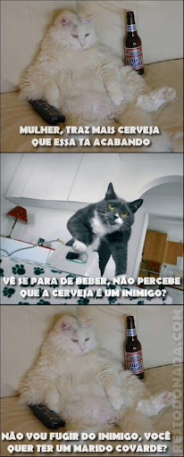 https://i0.wp.com/lh3.ggpht.com/_YpOh9wQSPU8/TMSWJFrC9GI/AAAAAAAACZY/K0trvPfTtVE/cat.jpg