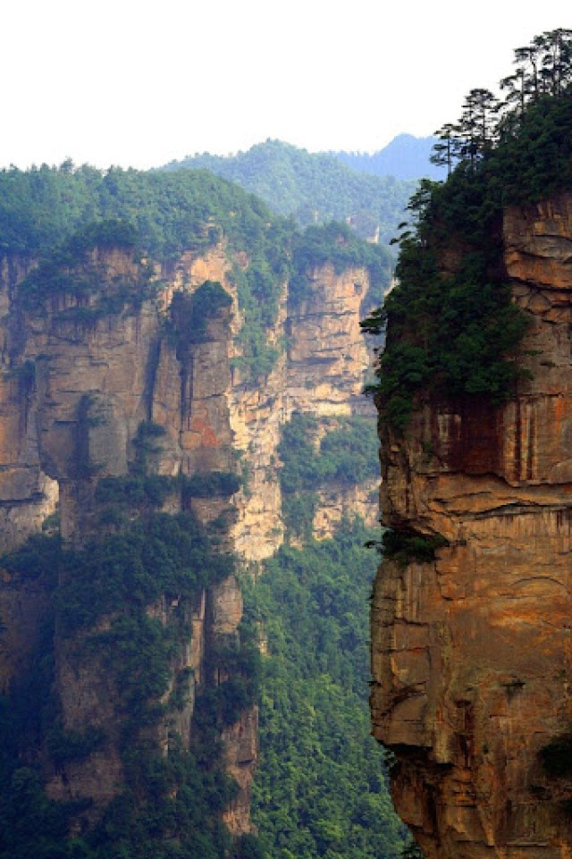 zhangjiajie (10)