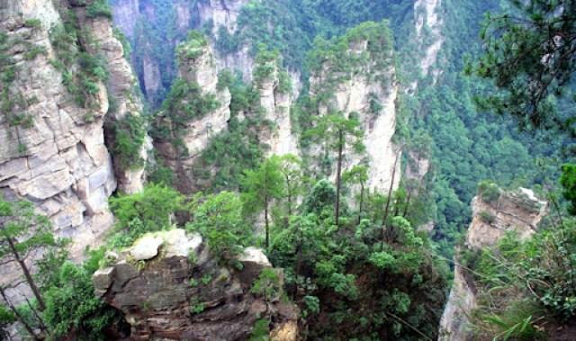 zhangjiajie (13)