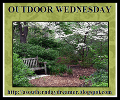 Outdoor Wednesday logo
