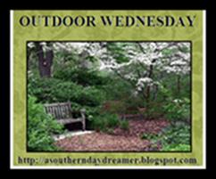 OutdoorWednesdaylogo545444