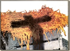 cross-shadow-on-manger-743969