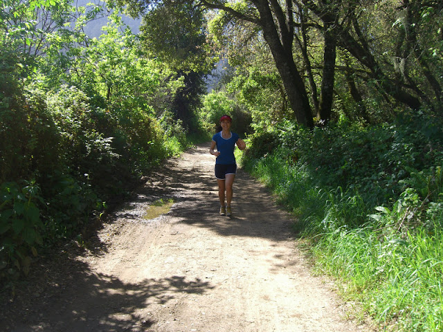 Serena running the Skyline to the Sea Trail