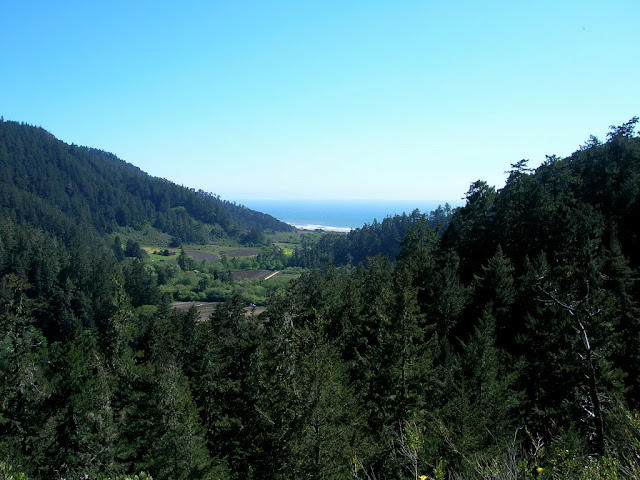 Waddell Beach from the Clark Connector Trail