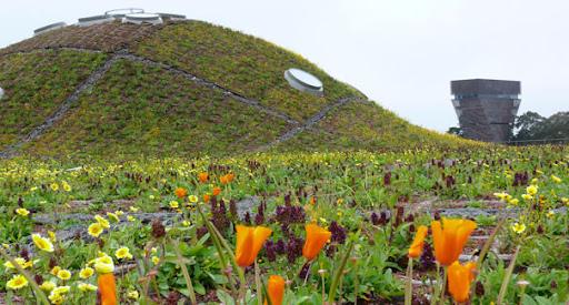 7 Taman Atap Yang Menakjubkan Dari Berbagai Negara Dzikuthedziko