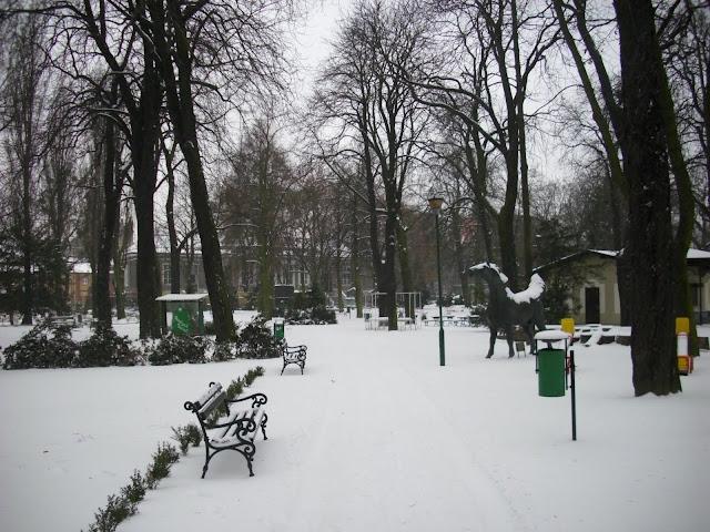 Stare Zoo zimą - koń widoczny po prawej